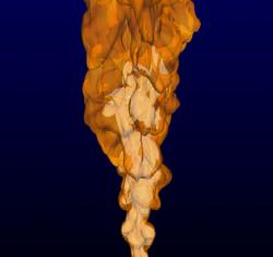 Image-20